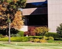 Commercial Landscape & Land Maintenance