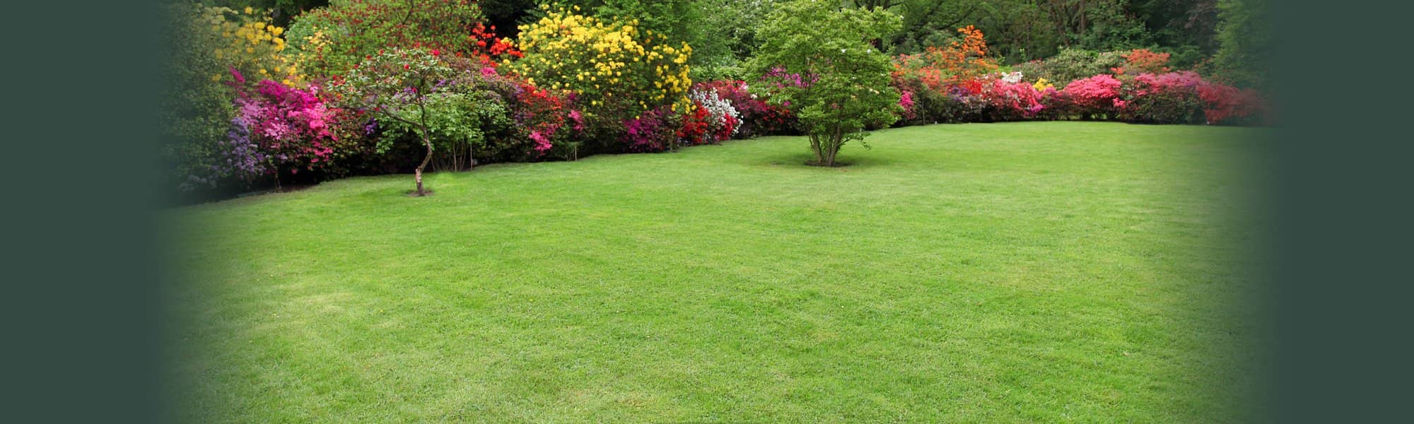 Residential Lawn Care & Turf Management in St. Louis