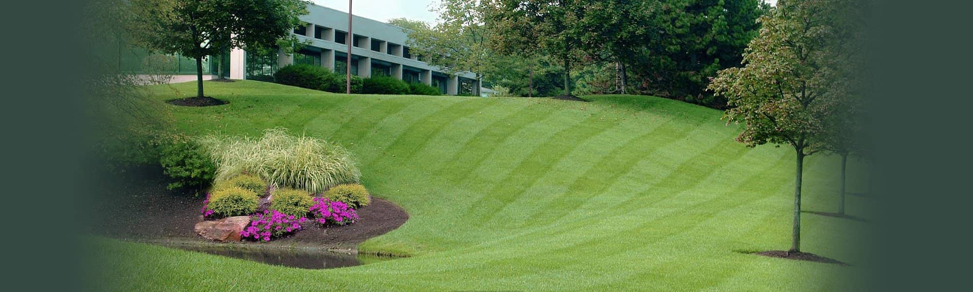 Commercial Turf Management & Grounds Maintenance
